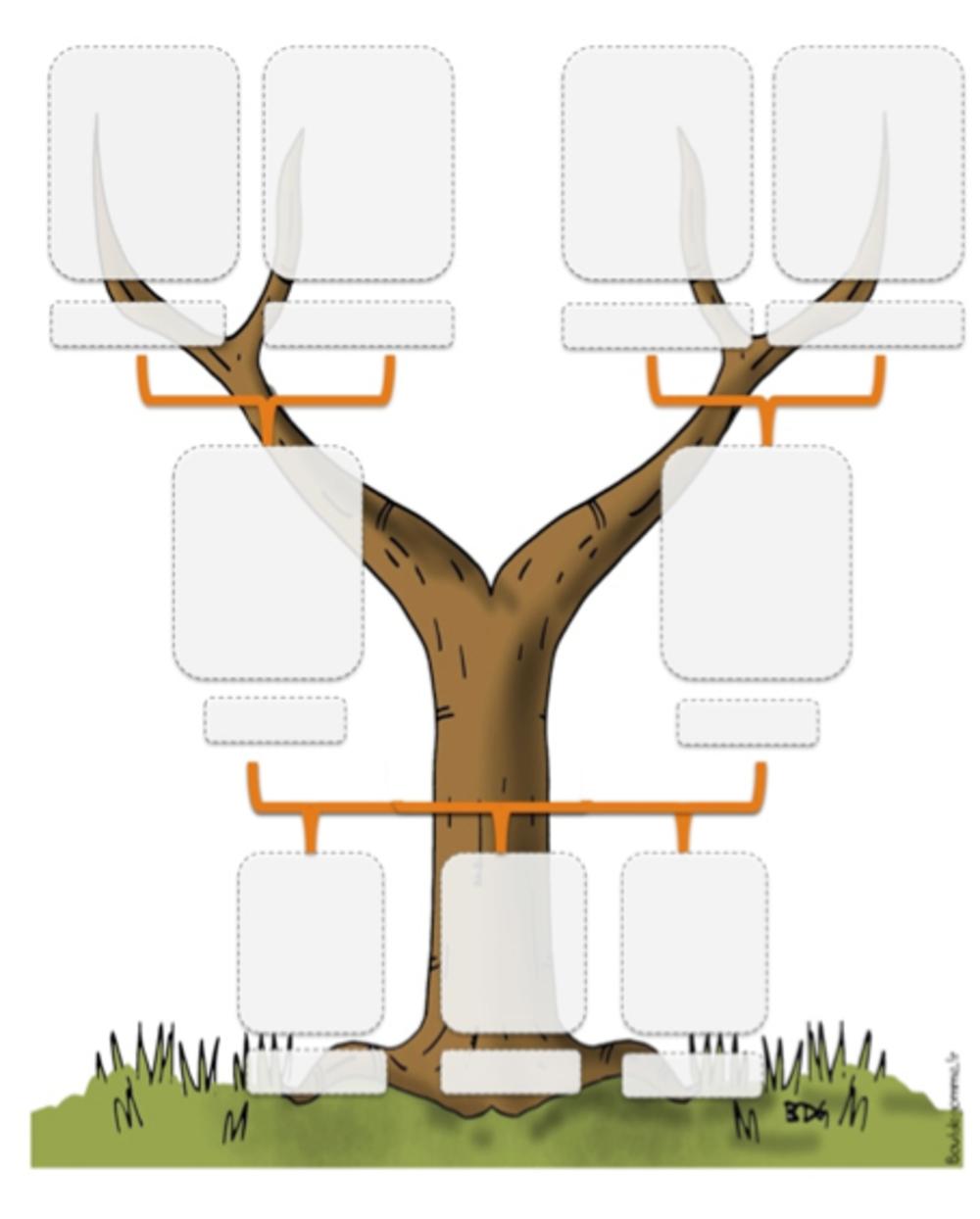 comment faire son arbre genealogique. Black Bedroom Furniture Sets. Home Design Ideas